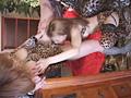 女豹悶絶生調教のサムネイルエロ画像No.5