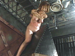 奴隷通信 No.29