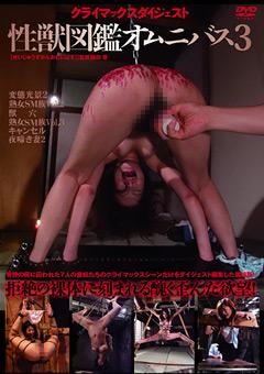 性獣図鑑オムニバス3