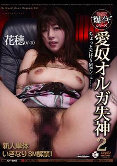 【花穂動画】愛奴オルガ失神2 -SM