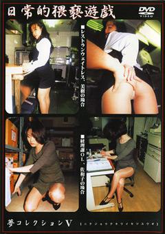 夢コレクション5 日常的猥褻遊戯 美樹 佐和子