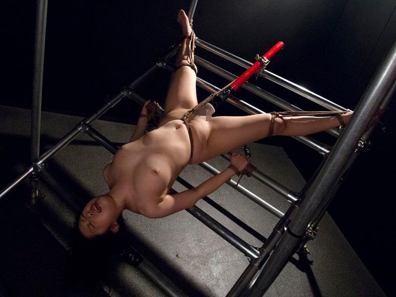 熟肉女体の凄まじい処刑映像 画像 6