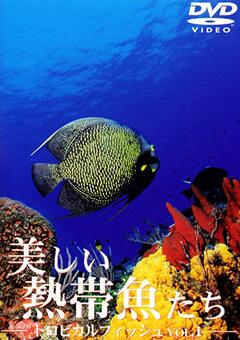 トロピカルフィッシュ VOL.1 美しい熱帯魚たち
