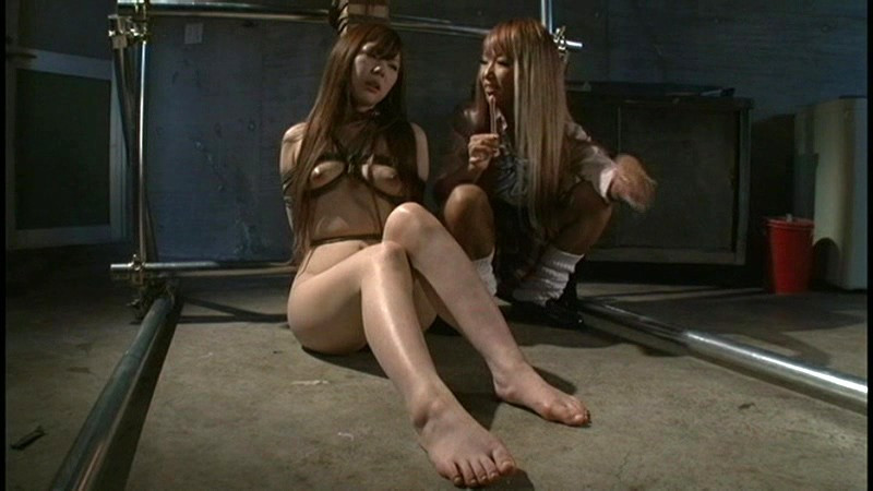 ビクセン総集編6 女に責め堕とされる女達のサンプル画像