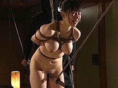 くいこみ股縄女剣士4 巨乳道場妻生恥さらし刑