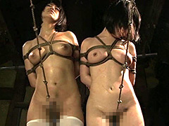 ビクセン総集編7 奴隷の誓いを言わされながら お仕置きされる女たち -上巻-