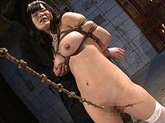 ビクセン総集編7 お仕置きされる女たち -下巻-