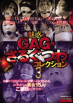 魅惑のGAG・さるぐつわコレクション3
