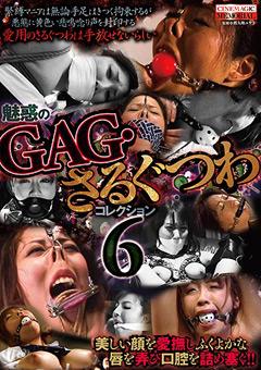 魅惑のGAG・さるぐつわコレクション6