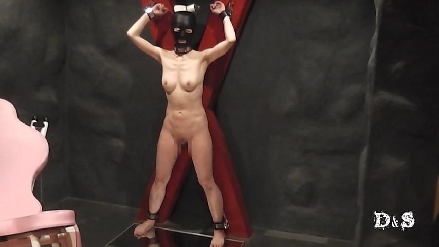 続・絶望したい女 レザーウィップ一本鞭 の画像1
