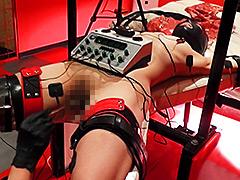 エリート変態女 ペットプレイ・電気責め拷問