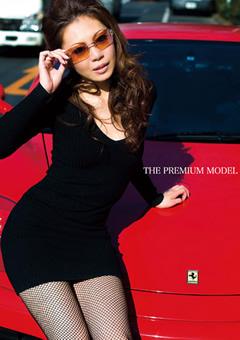 THE PREMIUM MODEL