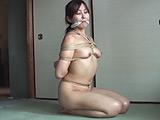 緊縛フルコース40 葵紫穂 【DUGA】