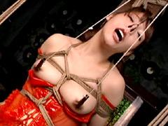 ゴールドTOHJIROレーベル・ベスト2 縄狂い・拷問の世界