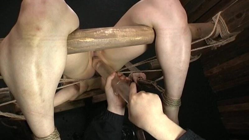 完全拘束・完全支配 拷問ドラッグ2 樹花凜 画像 4