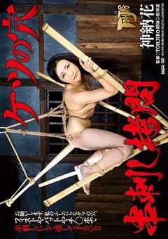 【神納花動画】ケツの穴-串刺し拷問-神納花 -SM