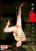 緊縛鬼イカセ 川上ゆう|人気の人妻・熟女動画DUGA