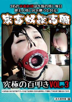 【SM動画】家畜奴隷志願-究極の百叩き-VOL.3
