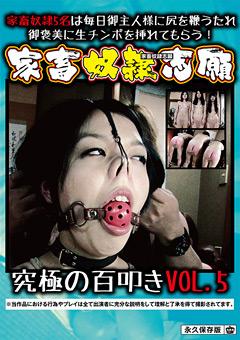 【SM動画】家畜奴隷志願-究極の百叩き-VOL.5