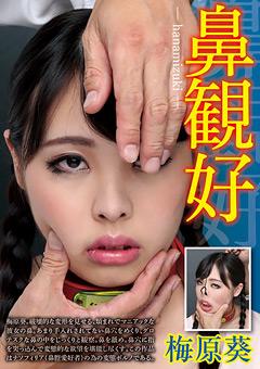 鼻観好-hanamizuki- 梅原葵