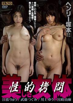 性的拷問 美しき女体