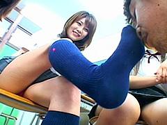 女子校生の紺のハイソックス