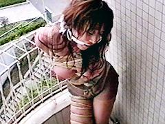美貌秘書 官能巨乳急襲縛り 中村京子