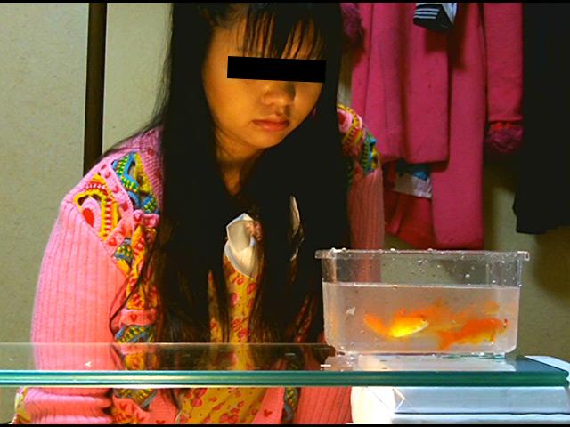 黒髪少女が金魚を素手で握りつぶしナマ足で踏み潰す! 画像 1