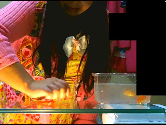 黒髪少女が金魚を素手で握りつぶしナマ足で踏み潰す! 画像 2