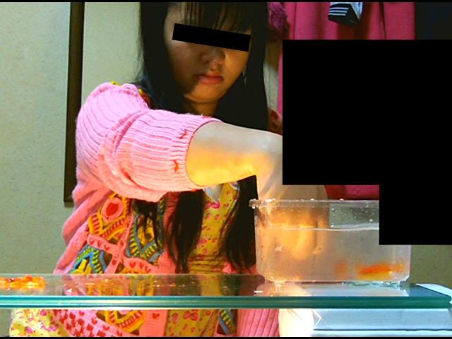 黒髪少女が金魚を素手で握りつぶしナマ足で踏み潰す! 画像 7