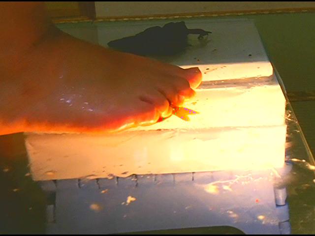 黒髪少女が金魚を素手で握りつぶしナマ足で踏み潰す! 画像 14