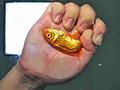 黒髪少女が金魚を素手で握りつぶしナマ足で踏み潰す!