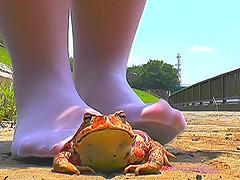 土で汚れたストッキング&ナマ足でヒキガエルを踏み潰す