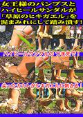 「草原のヒキガエル」を泥まみれにして踏み潰す!