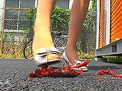 クラッシュ:スレンダー女性の黒&白ヒールがイモリとザリガニを踏む