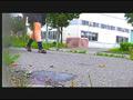 【復刻版】ザリガニが踏みにじられ自転車に轢き殺される-4