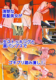 黒髪女性が巨大ゴキブリを一匹ずつ全体重をかけグリグリと生ストッキングで踏む!