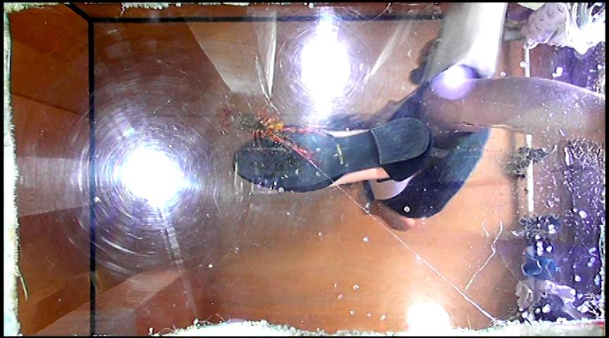 普通の女性・小百合さんがザリガニ・ゴキブリ・魚を踏むサムネイル02