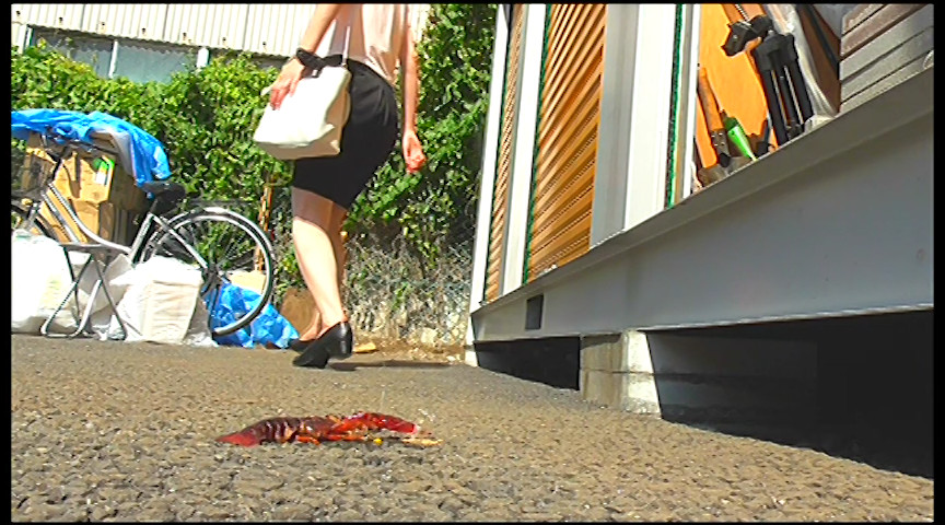 普通の女性・小百合さんがザリガニ・ゴキブリ・魚を踏むサムネイル06