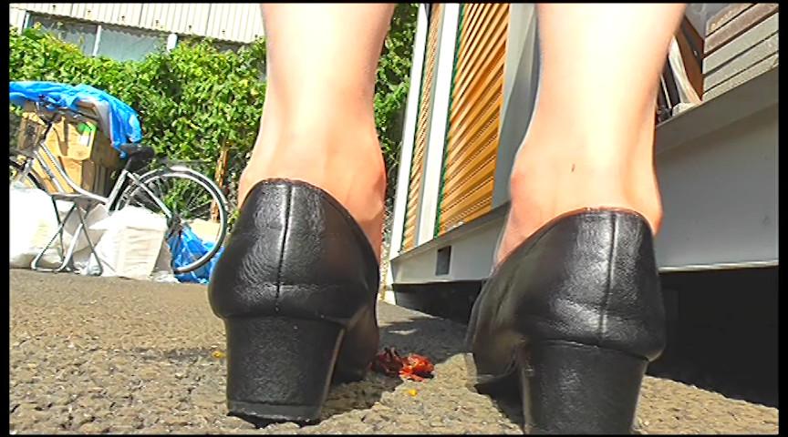 普通の女性・小百合さんがザリガニ・ゴキブリ・魚を踏むサムネイル07