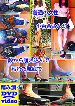 【小百合動画】準普通の女性・小百合さんがザリガニ・ゴキブリ・魚を踏む -マニアック