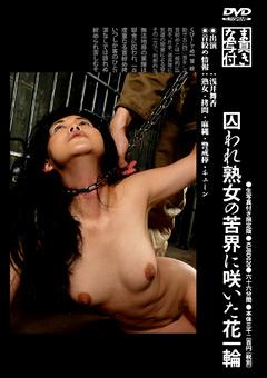 「囚われ熟女の苦界に咲いた花一輪」のパッケージ画像
