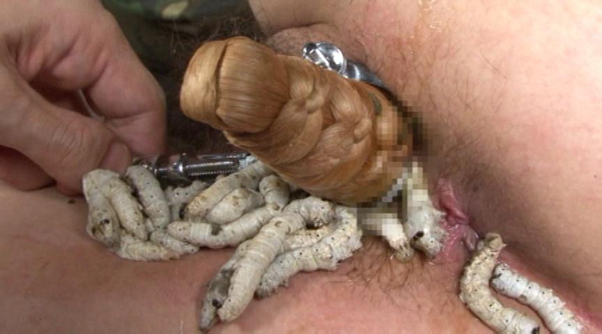 桑蚕に寂滅と姦淫に淡い膣窪 画像 15