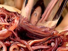 湯蟲に屍液と泥獣に纏い雌襞
