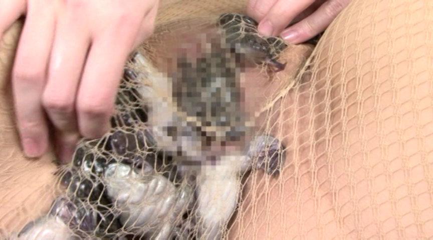 蛙に泥膣と嗜虐が螺旋に葬饗 画像 2