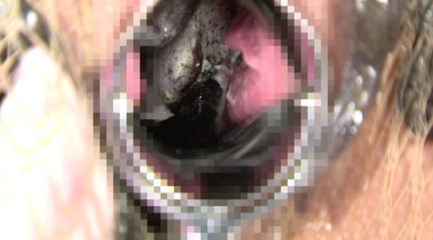 蛙に泥膣と嗜虐が螺旋に葬饗 画像 4