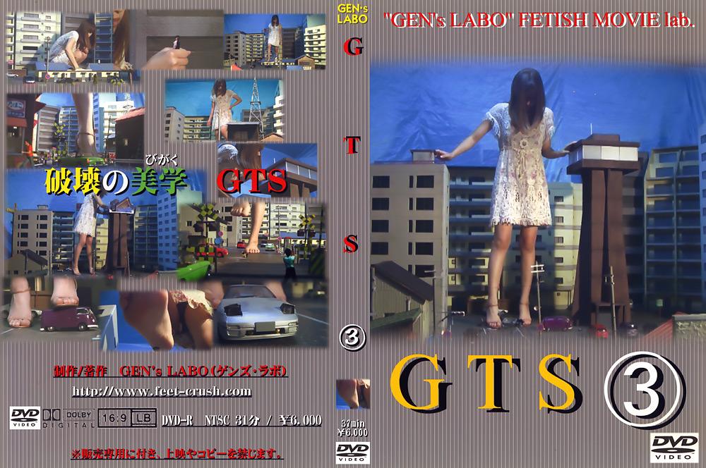 クラッシュ:GTS3