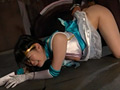セーラープリズム 美少女戦士セーラーメディウム磔標本