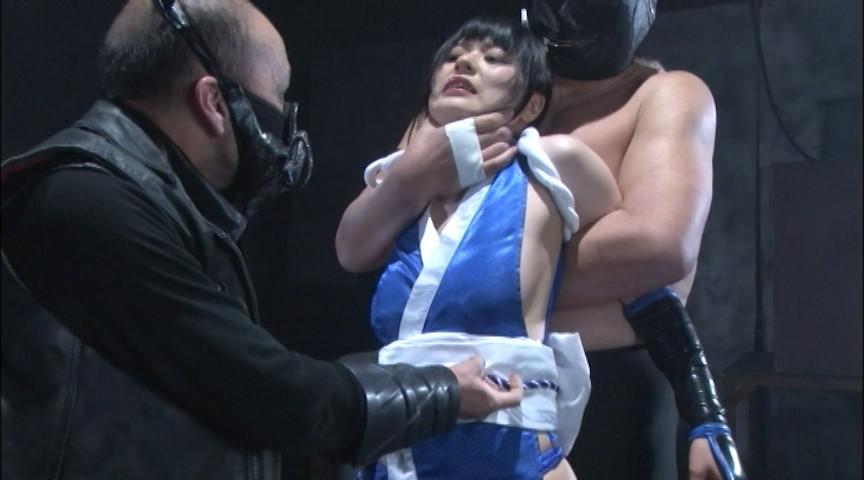 格闘姫陥落 火鷹舞