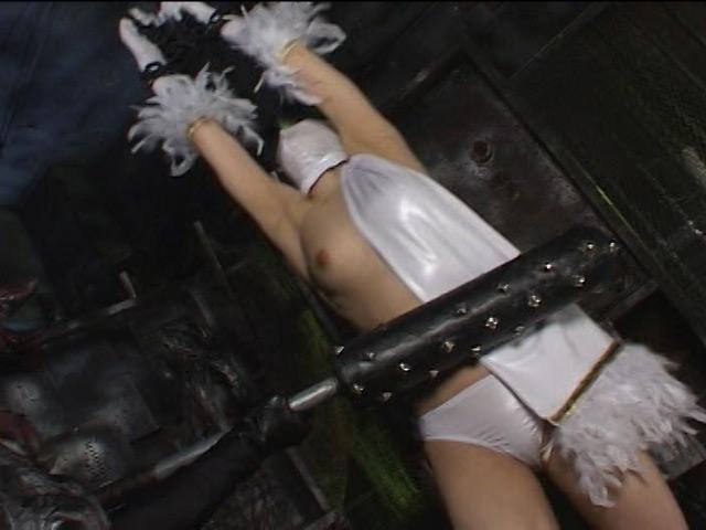 ヒロインダルマ拘束陥落 画像 2